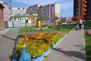 best_klumba_cvetnik9