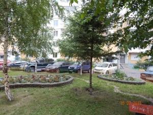 alekseeva_99_1
