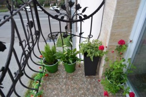 balkon_vavilova27a1
