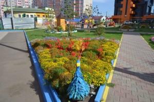 best_klumba_cvetnik5