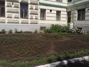 blagoustroennii_dvor_krasnoyarsk12