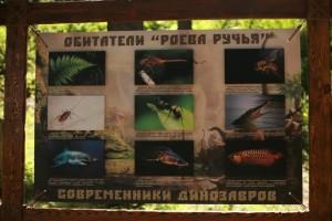 dino_park15