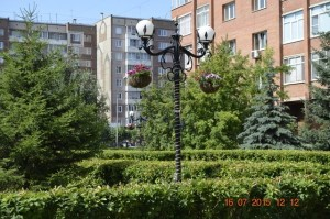 sibpromtrans3