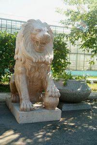 lion_granit