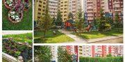 «Самый зеленый двор» — ул. Мужества, 24  ООО УК «Континент 1»