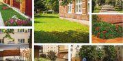 Лучшая территория средних профессиональных и высших образовательных учреждений, благоустроенная учащейся молодежью — СибГТУ